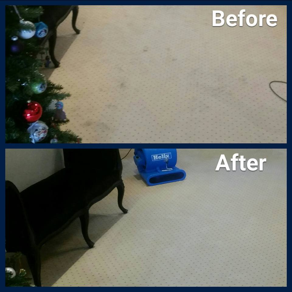 before and after photos of carpet with air mover next to chaise longue