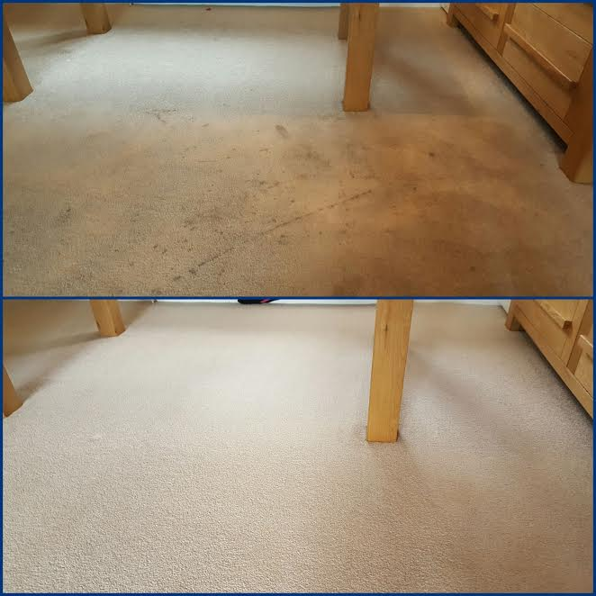 white carpet before and after carpet cleaning